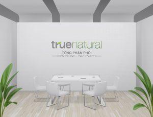 thiết kế logo văn phòng